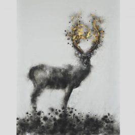 Lot 06   Nai xám – Cervus unicolor